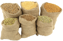 bulk herbs spices in india